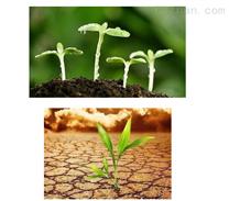 深圳绿化土壤检测找哪家单位可以做
