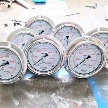 400Mpa耐震不銹鋼壓力表現貨