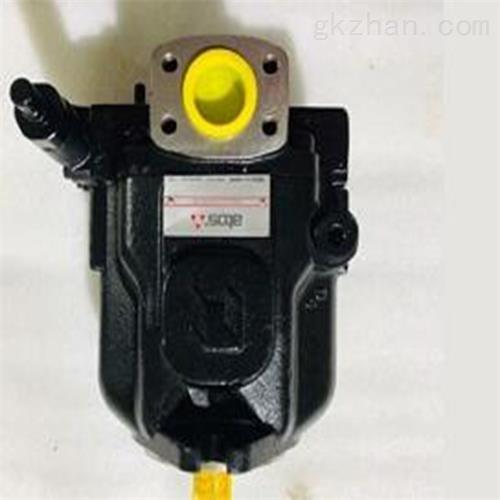 ATOS柱塞泵 仪表