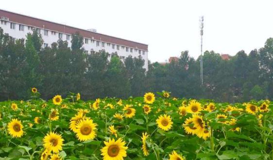 第18届中国农业机械学会2020学术年会隆重举行