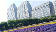 现代汽车中国前瞻数字研发中心正式揭幕,本土化研发进程再提速
