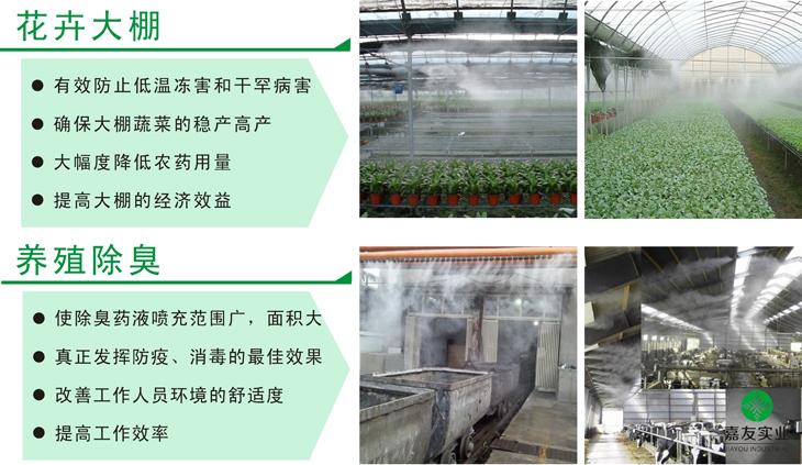 大型工業加濕機應用于花卉大棚可有效防止低溫凍害